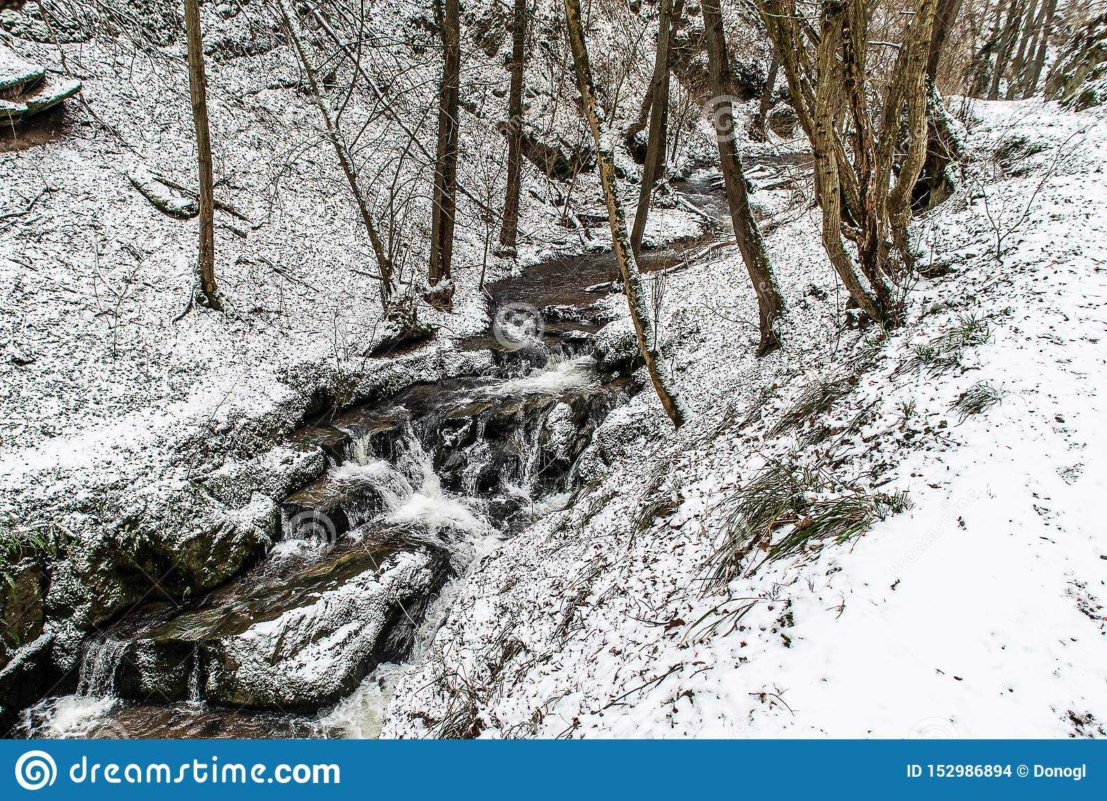 Winterlandschaft in den deutschen Bergen, schneebedeckter Wald, Bäume im Schnee, Winternebenfluß, Wasserfall, Natur nahe brodenba