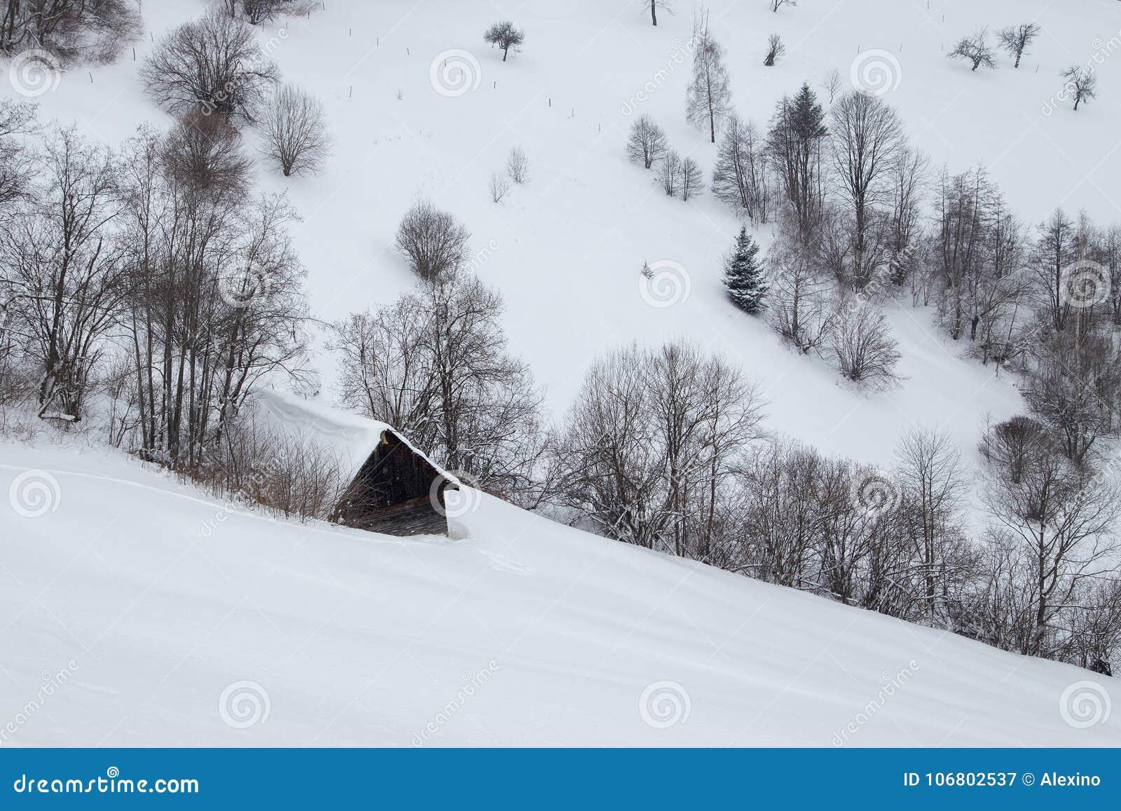 Download Winterlandschaft Des Transylvanian Dorfs Stockbild - Bild von wald, hügel: 106802537