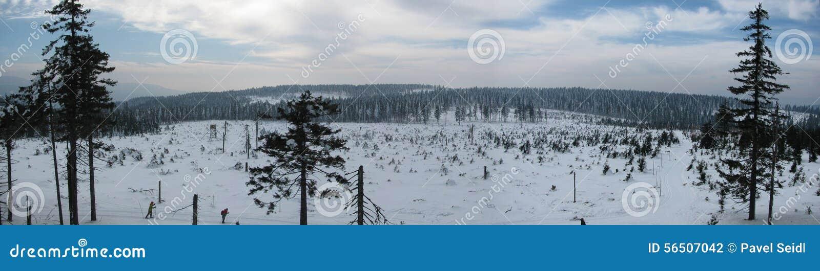 Winterlandschaft entlang den Bahnen für Skilanglauf