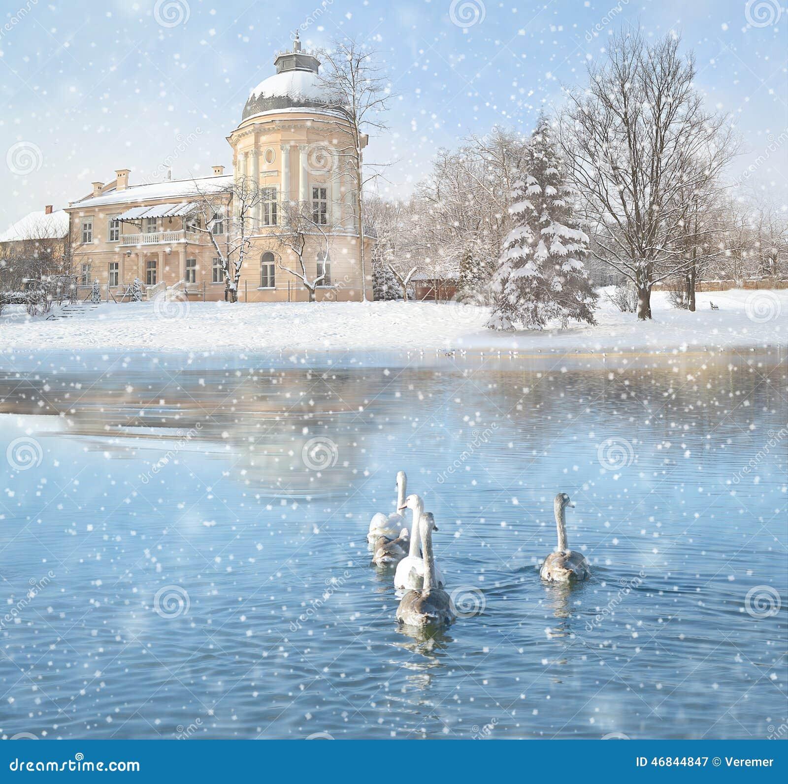 winterlandschaft mit schnee schloss und schw nen stockfoto bild 46844847. Black Bedroom Furniture Sets. Home Design Ideas