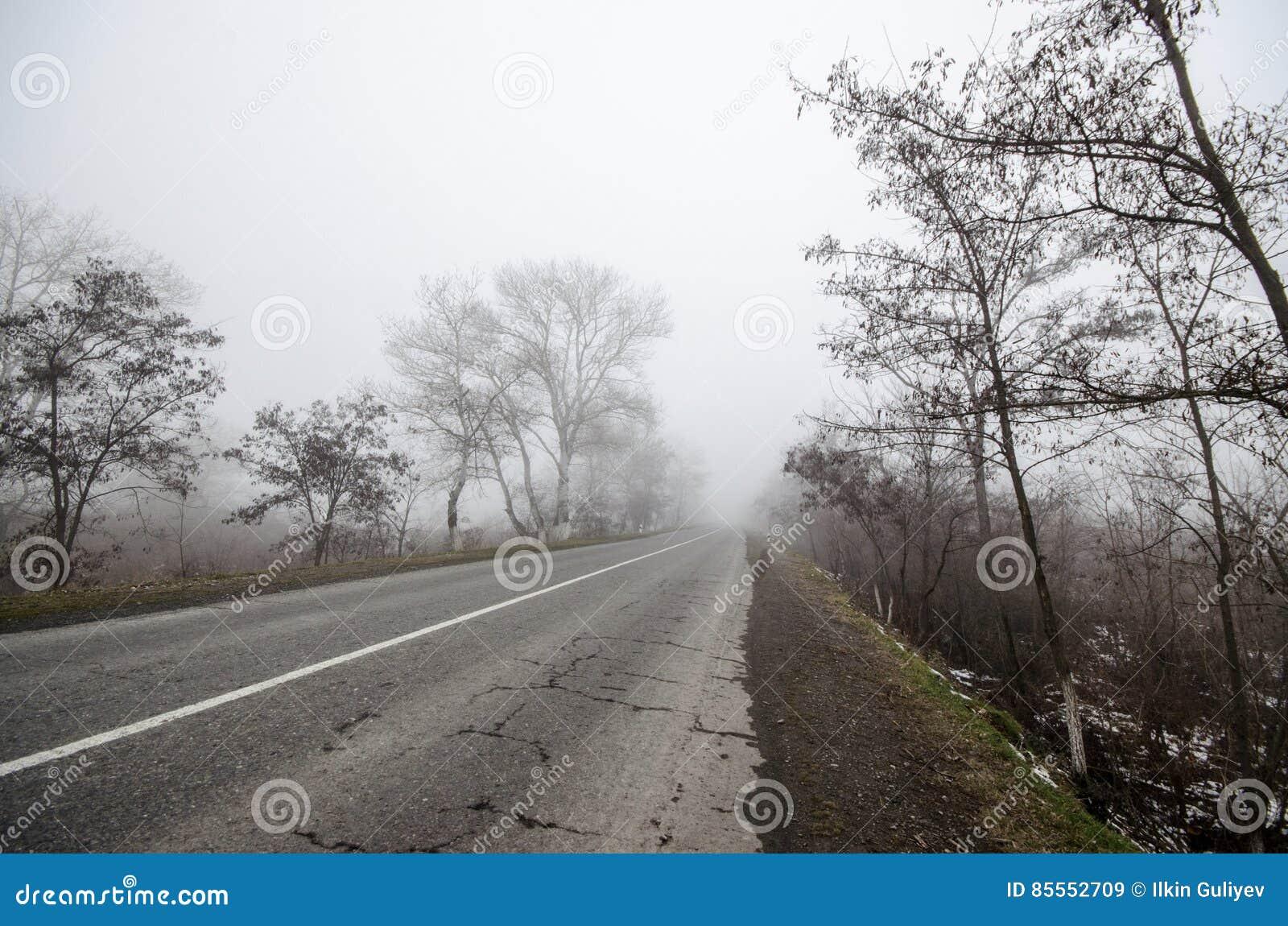 Winterlandschaft von Bäumen silhouettieren das Wachsen nahe einer Straße Und herum, der umgebende Nebel Straße zu Sheki, Aserbaid