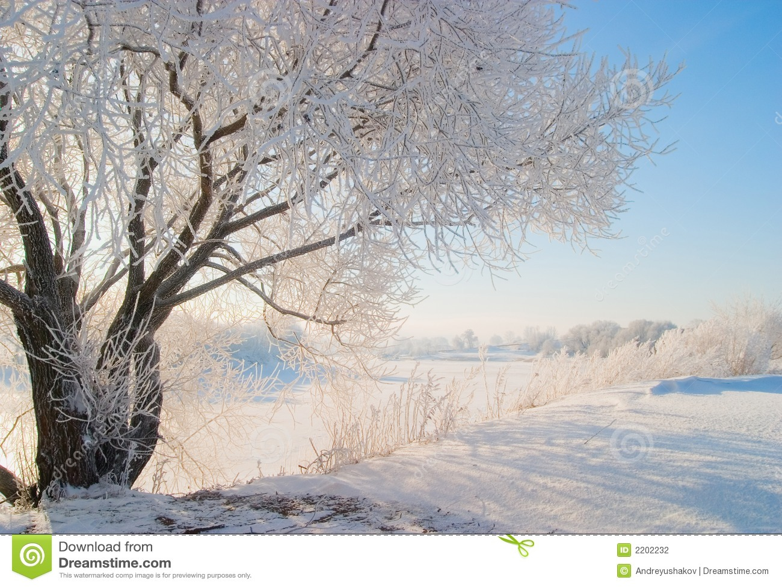 Winternatur