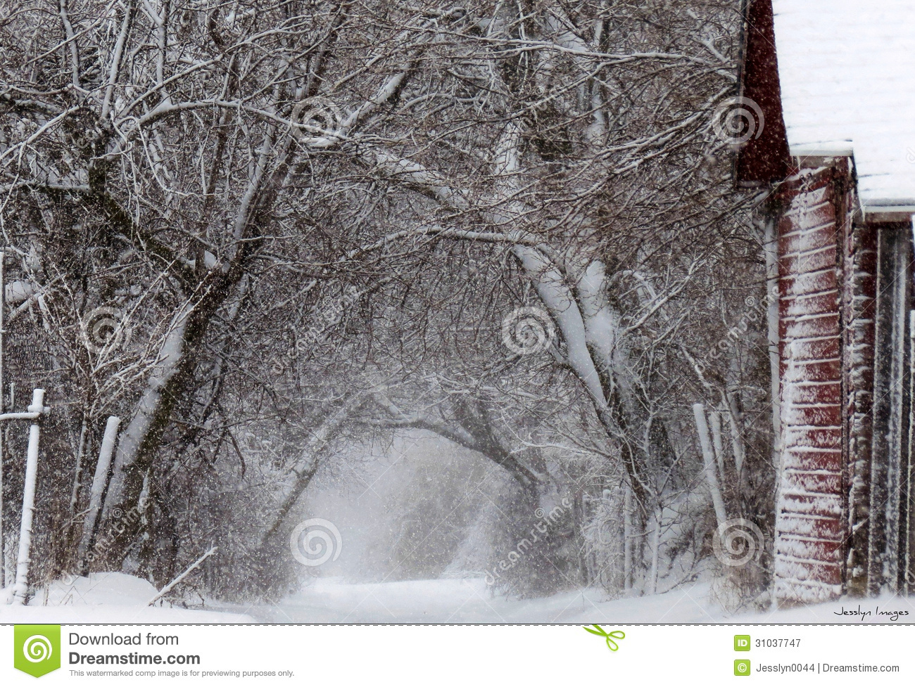 Winters wind royalty free stock photography image 31037747 - Autumn plowing time all set for winter ...