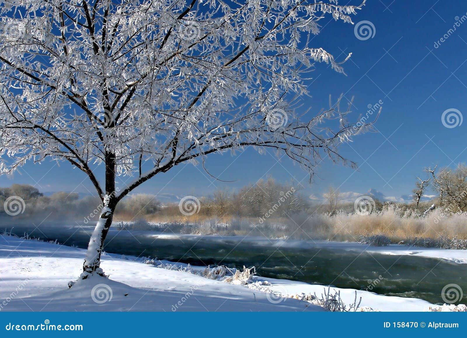 Winterscape