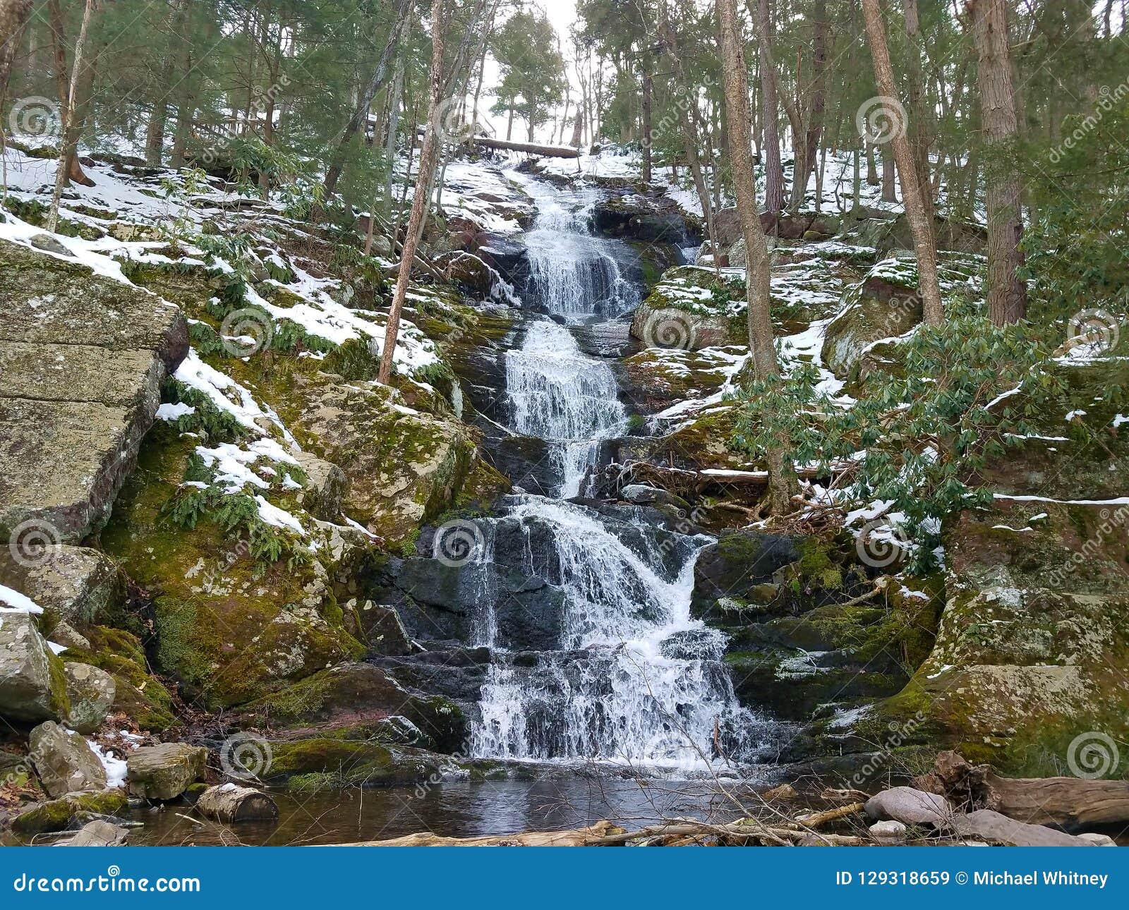 Winterse Beboste Waterval