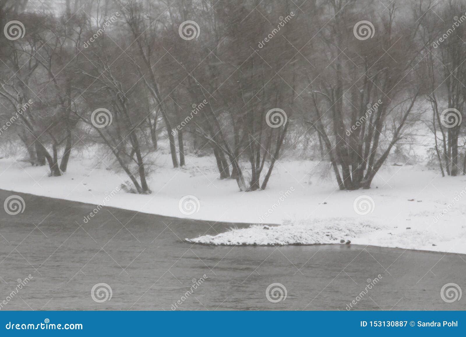 Winterstorm på den Rhine River Tyskland
