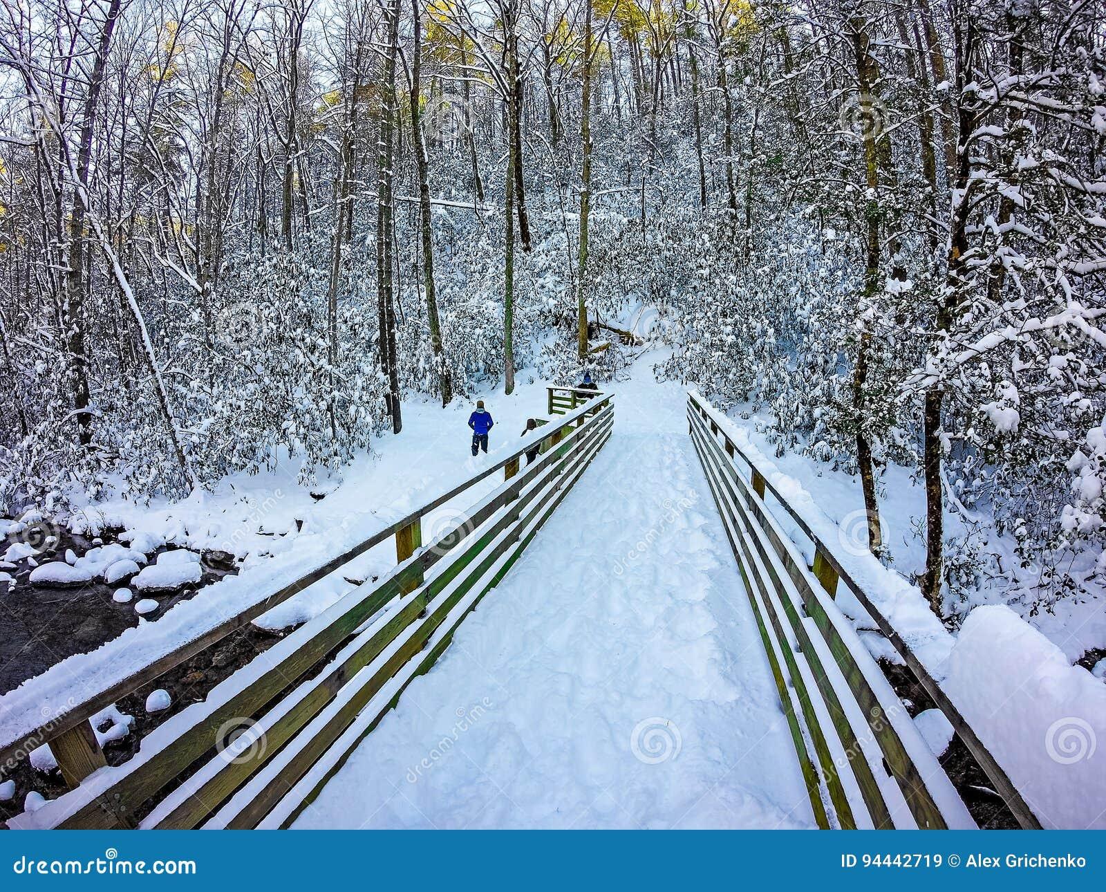 Winterszenen am Südgebirgsnationalpark in Nord-Carolina