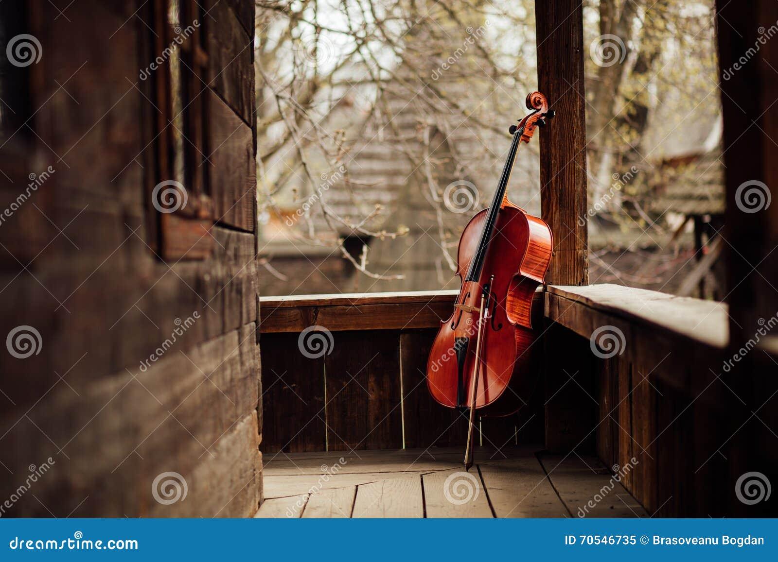 Wiolonczelowy opierać na ganeczku