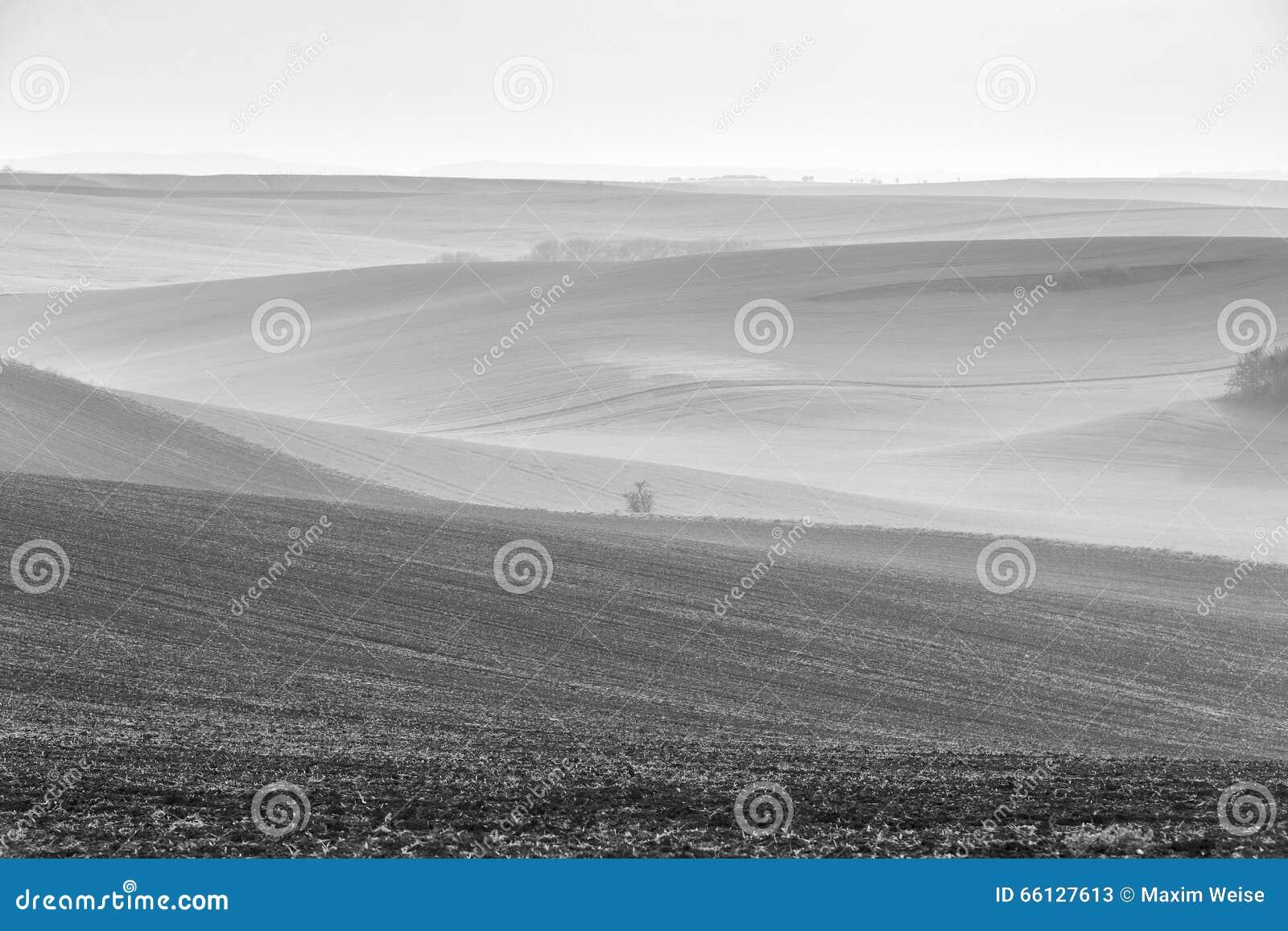 Wiosna fartuch Moravia pola w chmurnym dniu