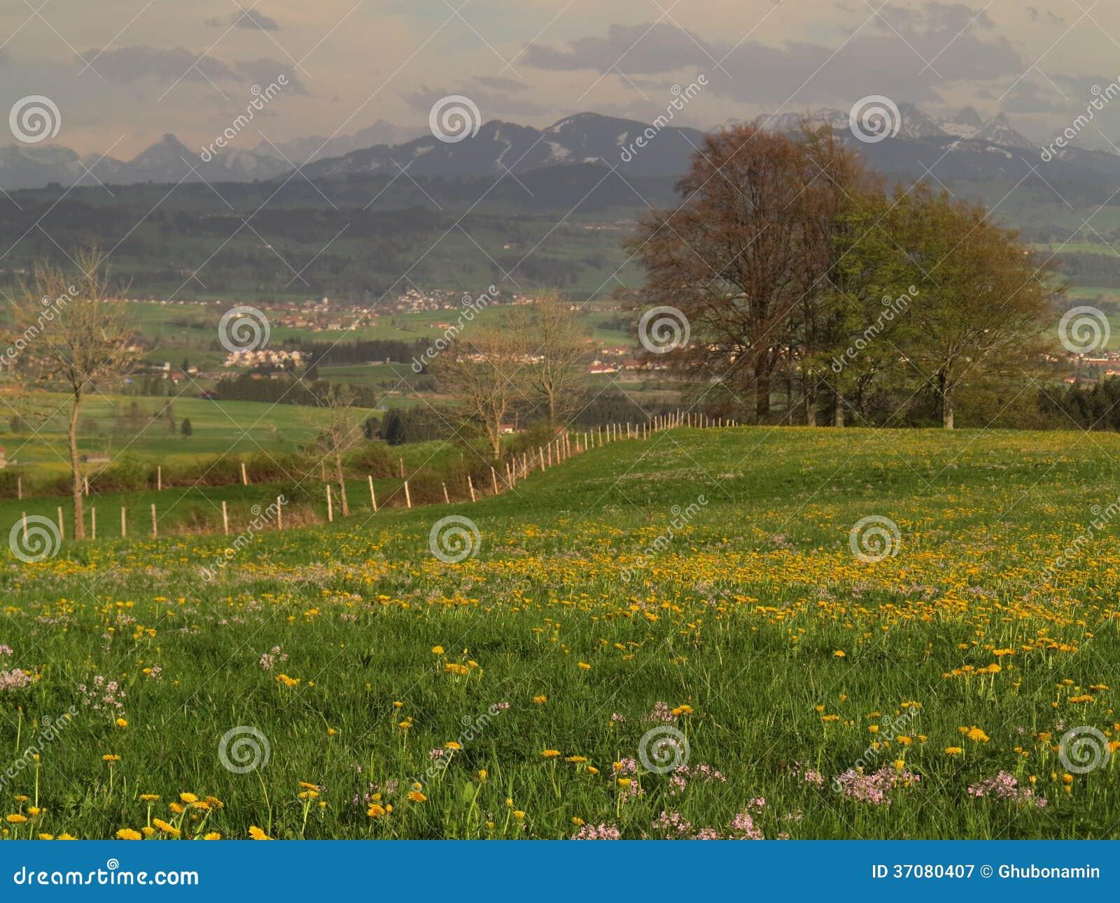 Download Wiosna krajobraz obraz stock. Obraz złożonej z ziemia - 37080407