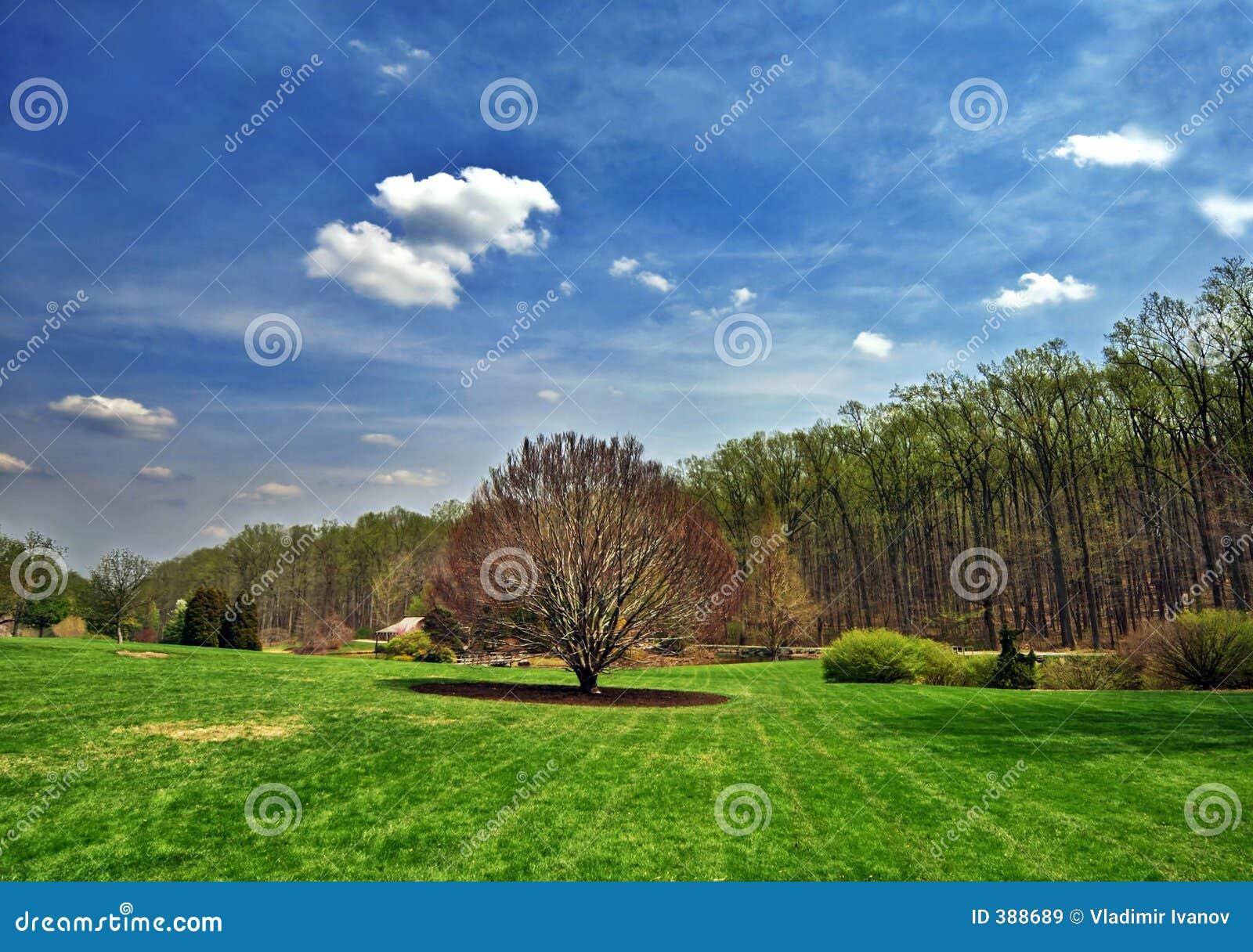 Wiosna krajobrazowa