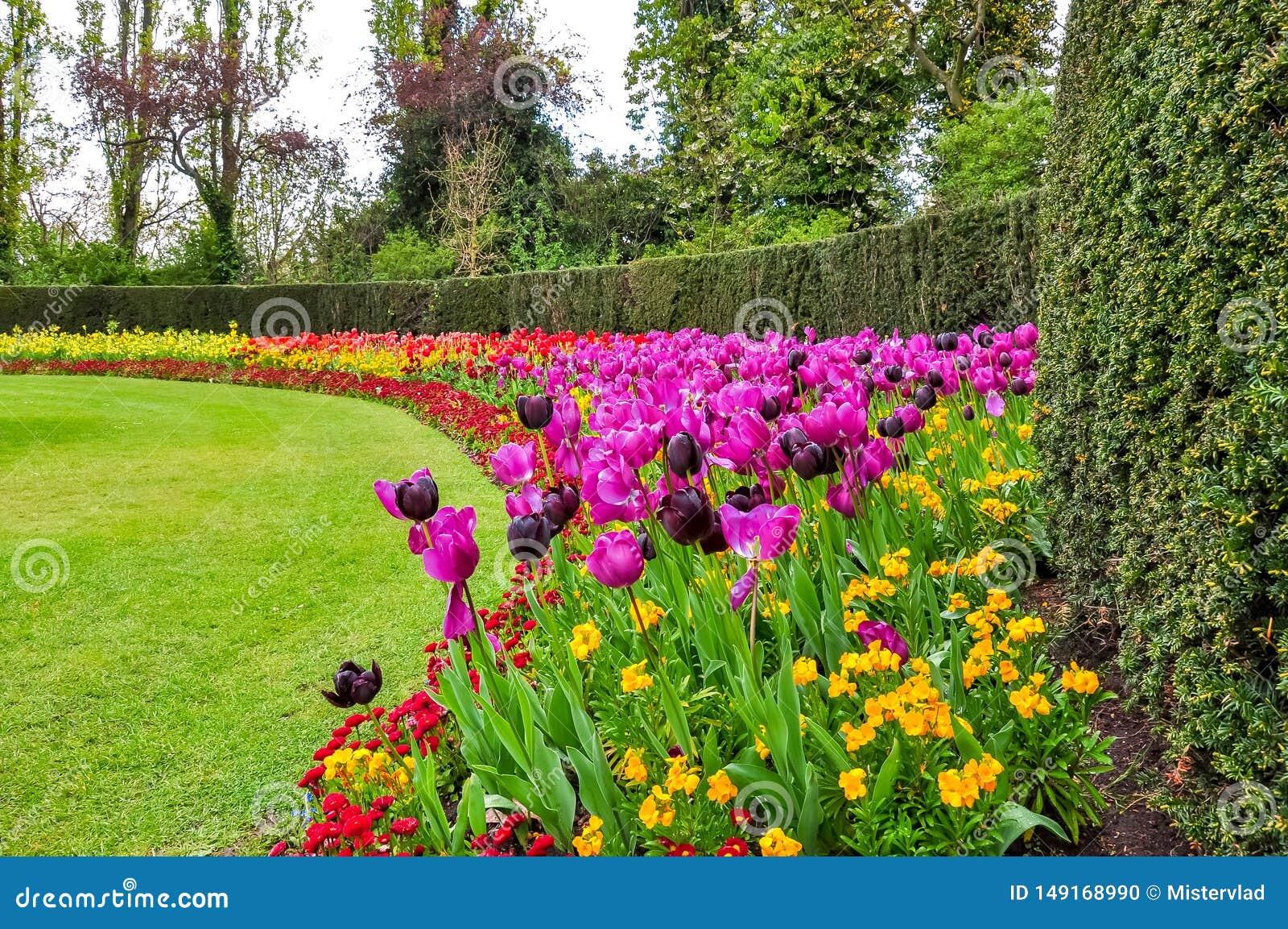 Wiosna kwitnie w regenta parku, Londyn, Zjednoczone Królestwo