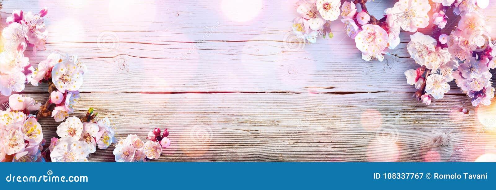 Wiosna sztandar - menchii okwitnięcia