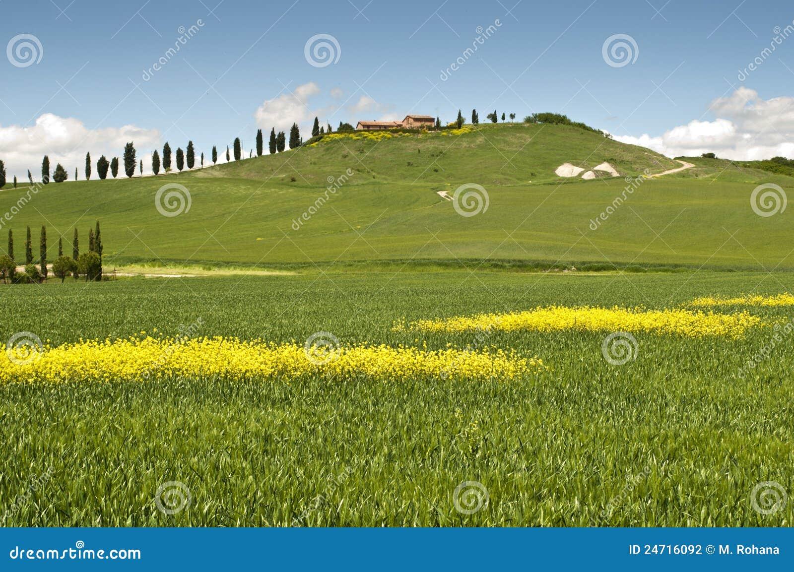 Wiosna Tuscany