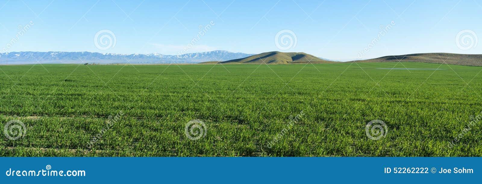 Wiosny dolina, antylopy dolina, Kalifornia
