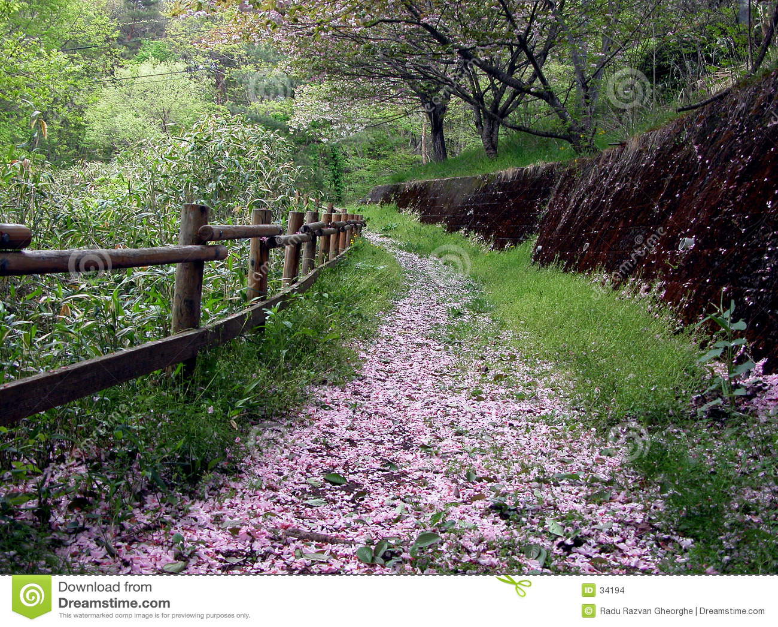 Wiosny drogi