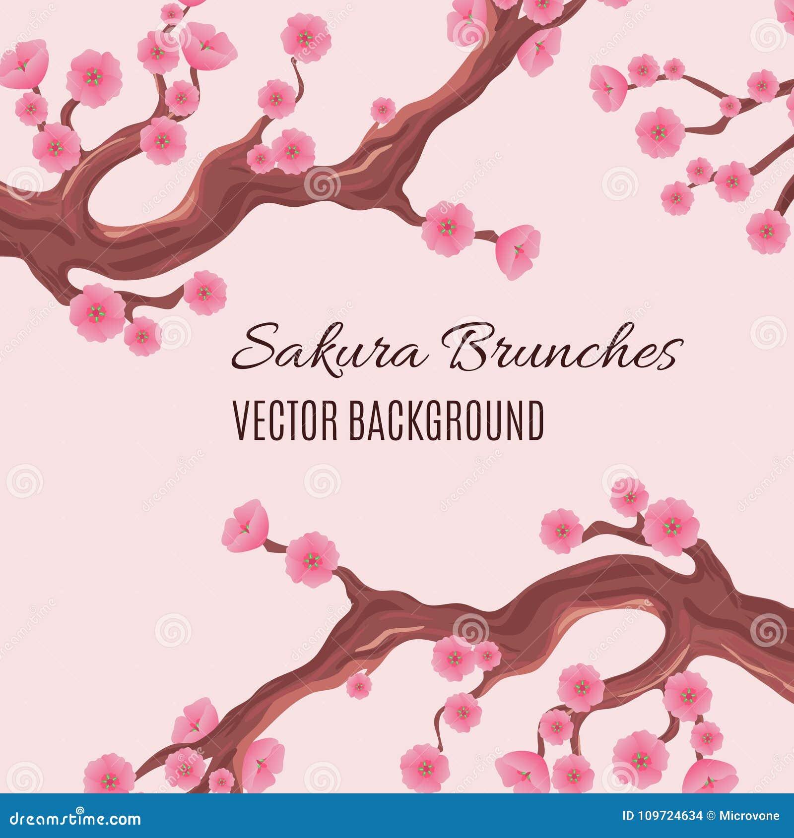 Wiosny japoński tradycyjny wektorowy tło z okwitnięcia Sakura drzewa czereśniowymi śniadanio-lunch