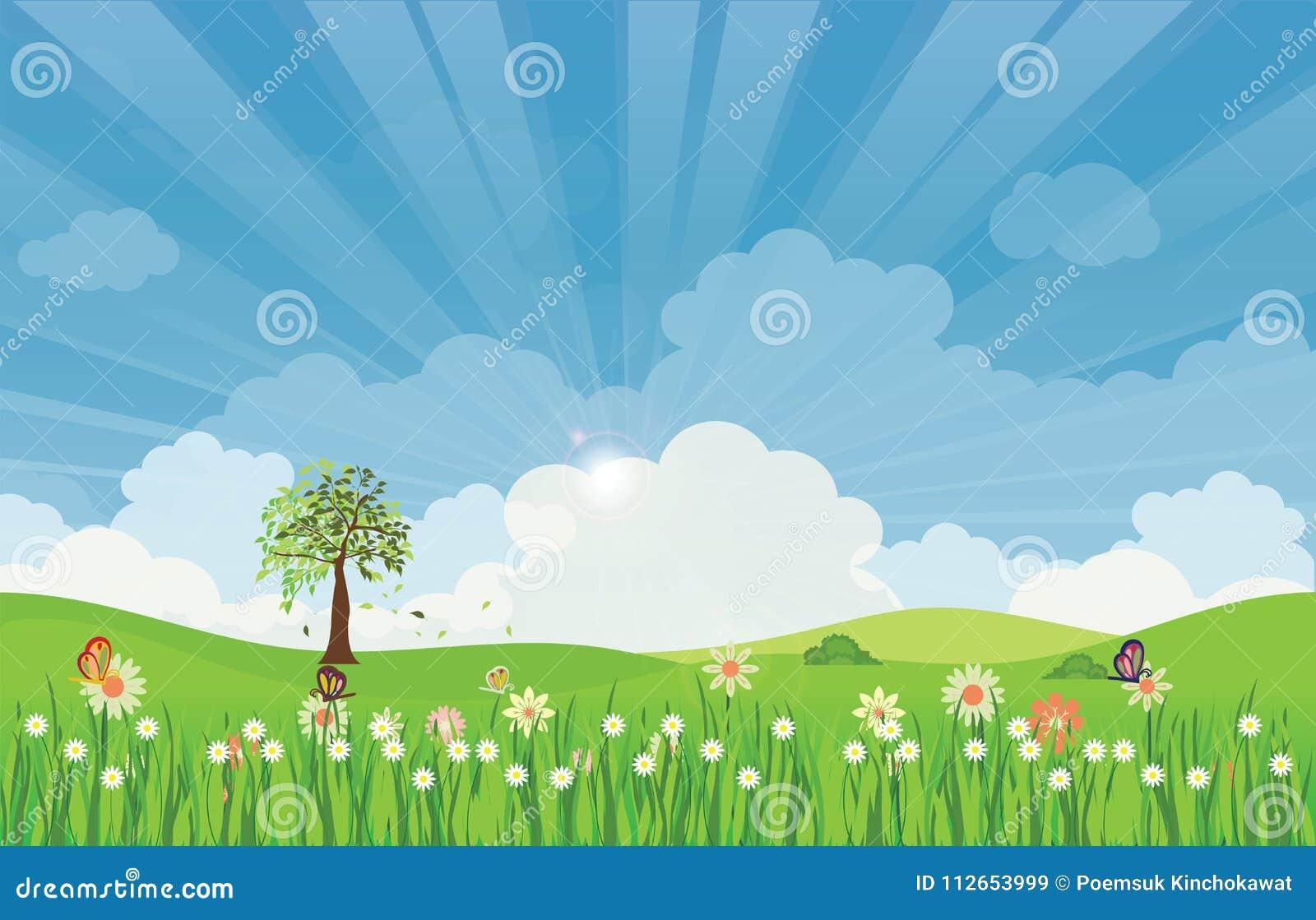 Wiosny lata łąki krajobraz z słońce kwiatami i promieniami