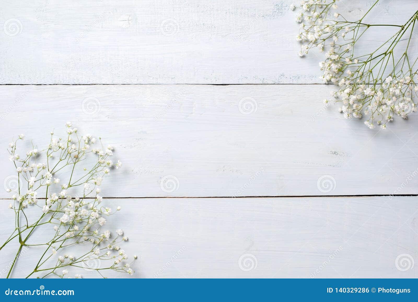 Wiosny tło, kwiat rama na błękitnym drewnianym stole Sztandaru mockup dla kobiety lub matek dnia, wielkanoc, wiosna wakacje Miesz