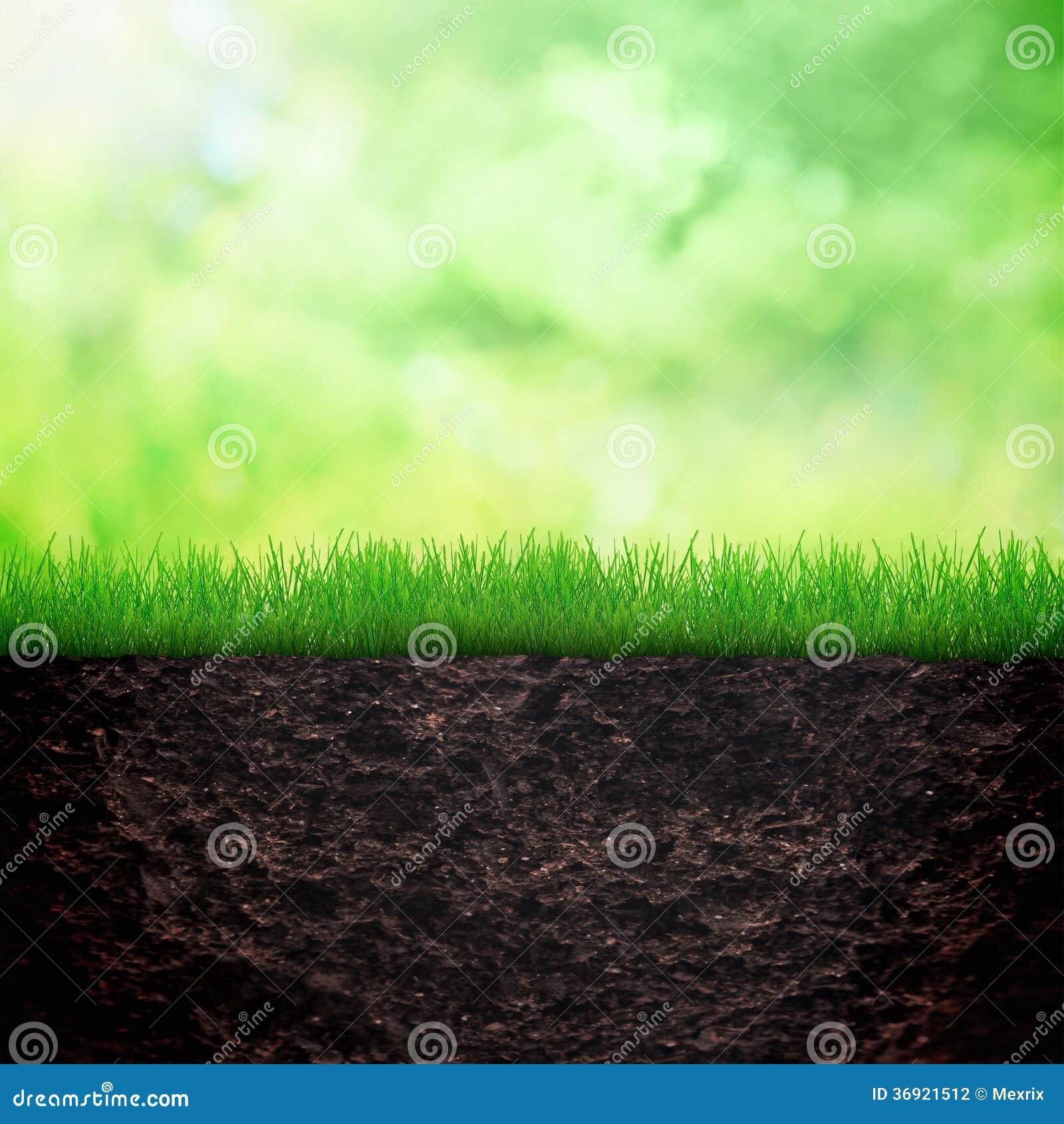 Wiosny ziemia i tło