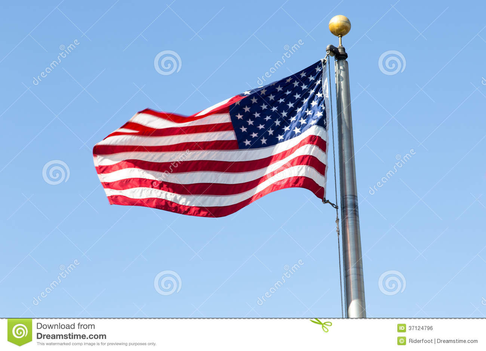 Wir Flagge