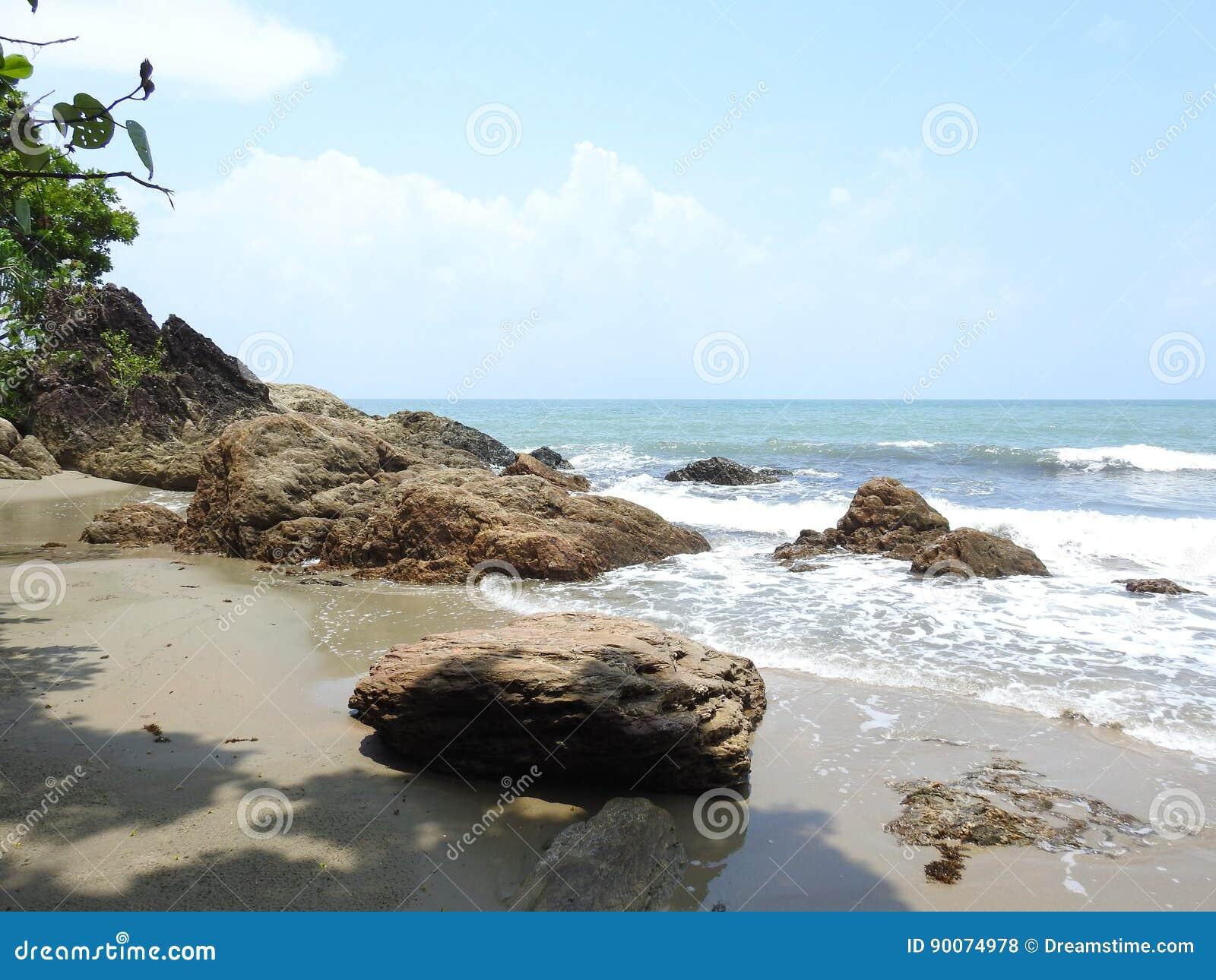 Wir zatoki plaża