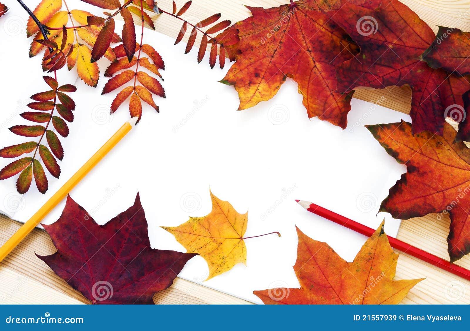 Wir Zeichnen Den Herbst Stockbild Bild Von Schonheit 21557939