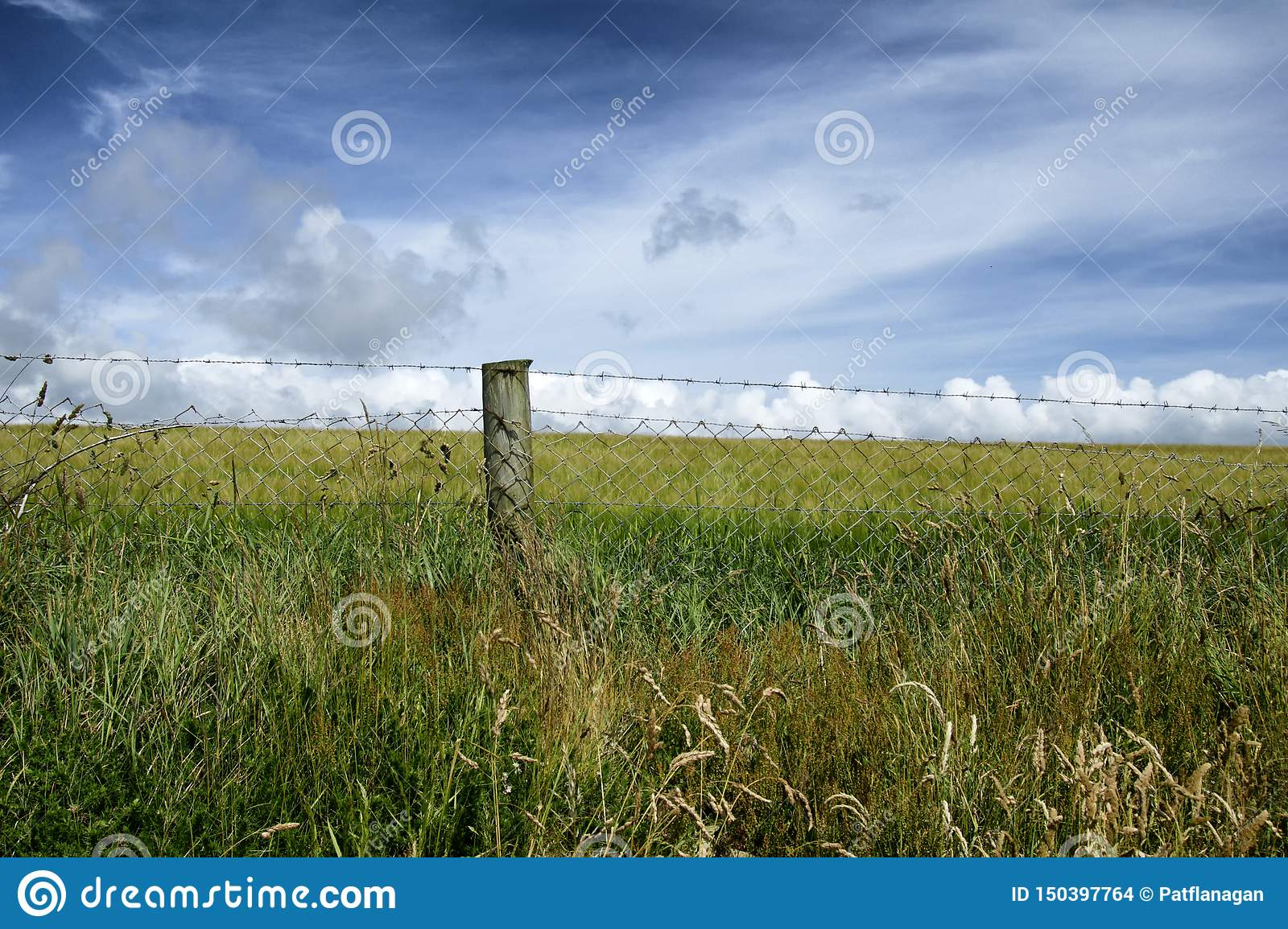 A wire fence in front of a meadow