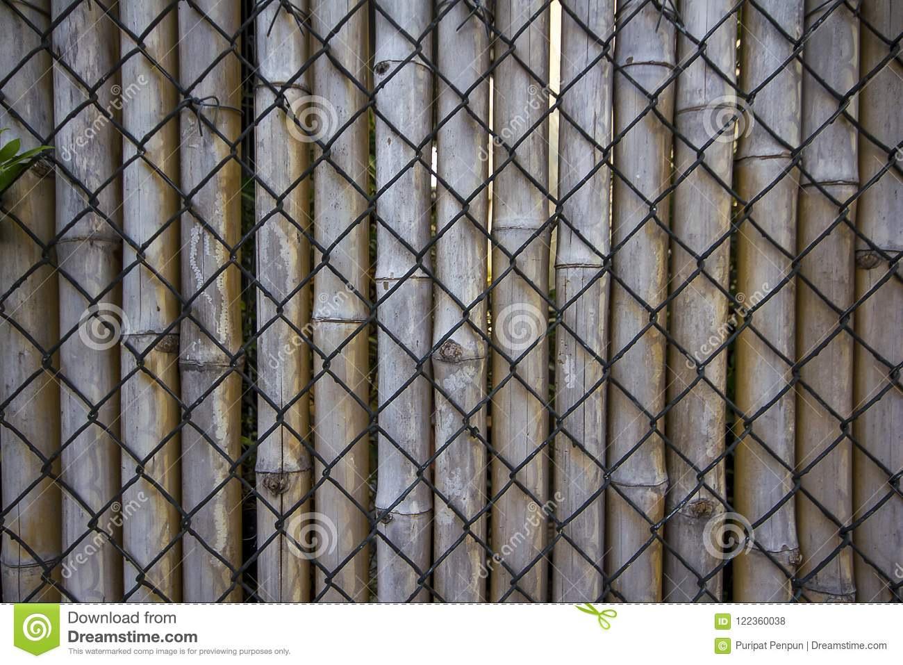 Wire Mesh, Bamboo Used To Make Fences. Stock Photo - Image of border ...