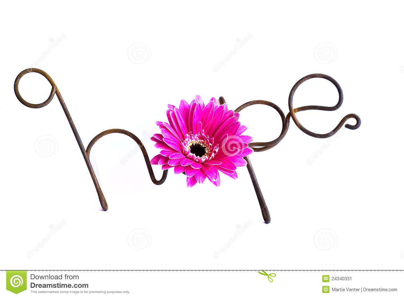 The word Hope fashioned from rusted wire, with a bright pink gerber ...