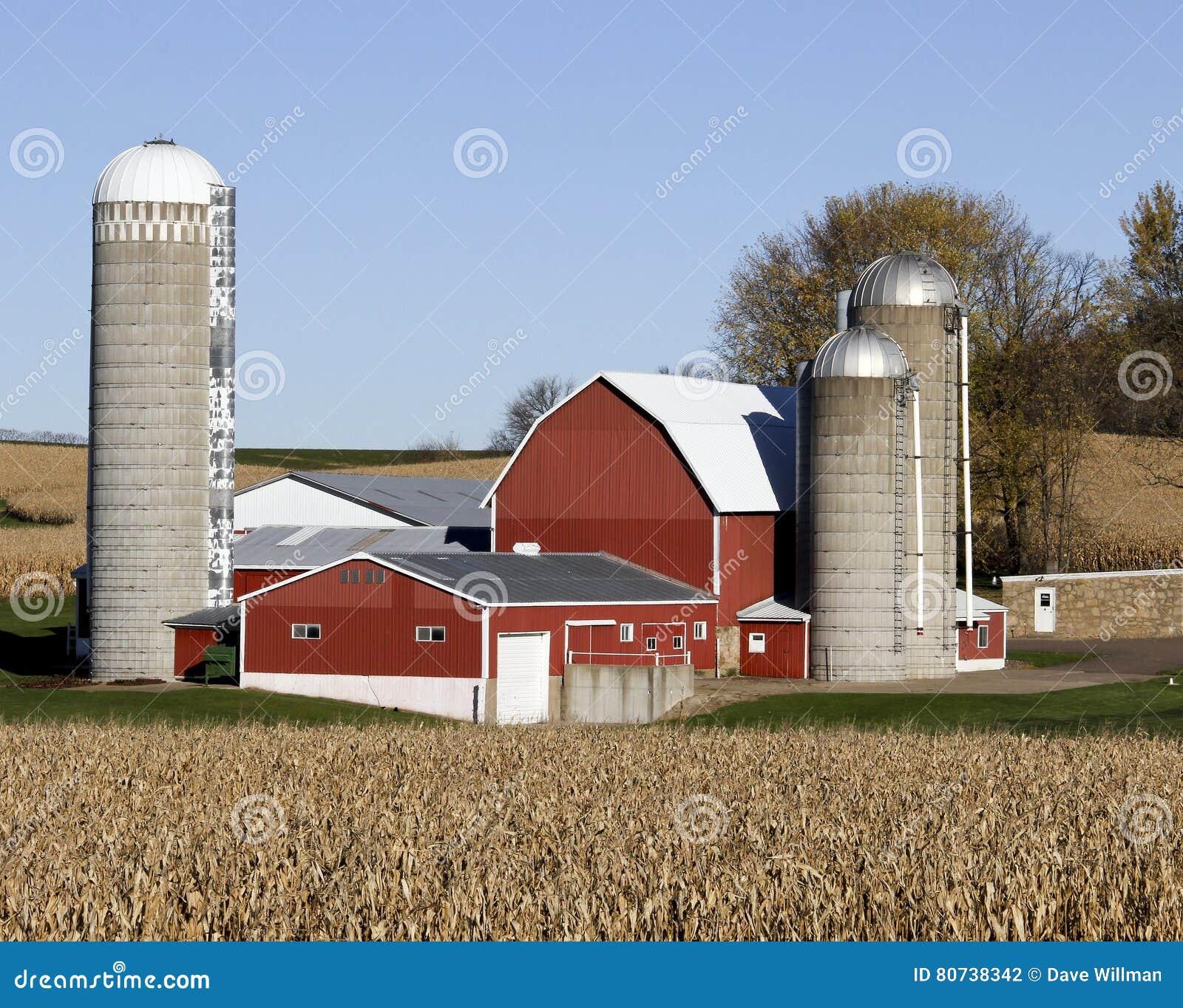 Wisconsin mejerilantgård och havrefält