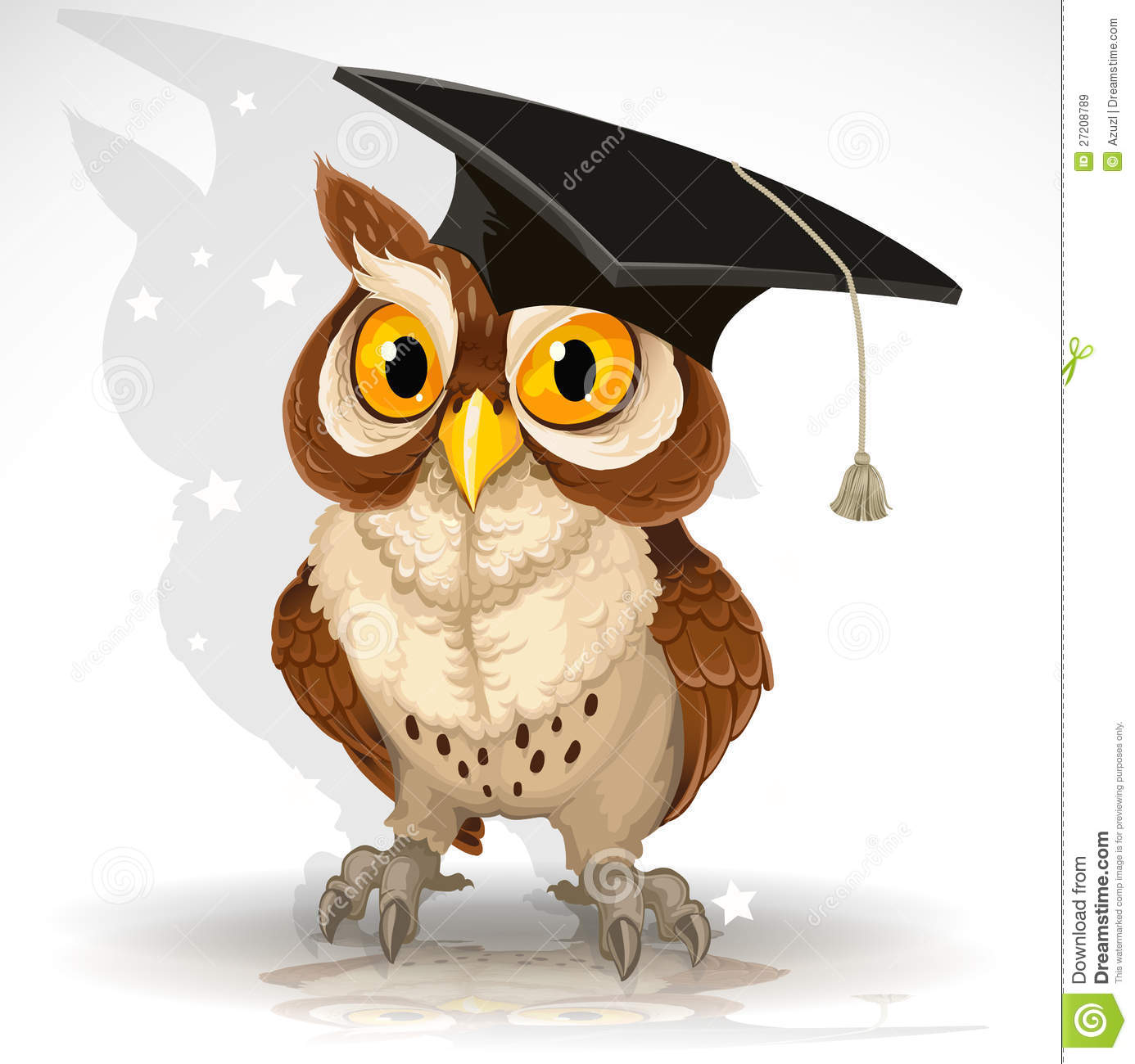 Wise Owl In The Cap Of The Graduate Royalty Free Stock Images - Image ...