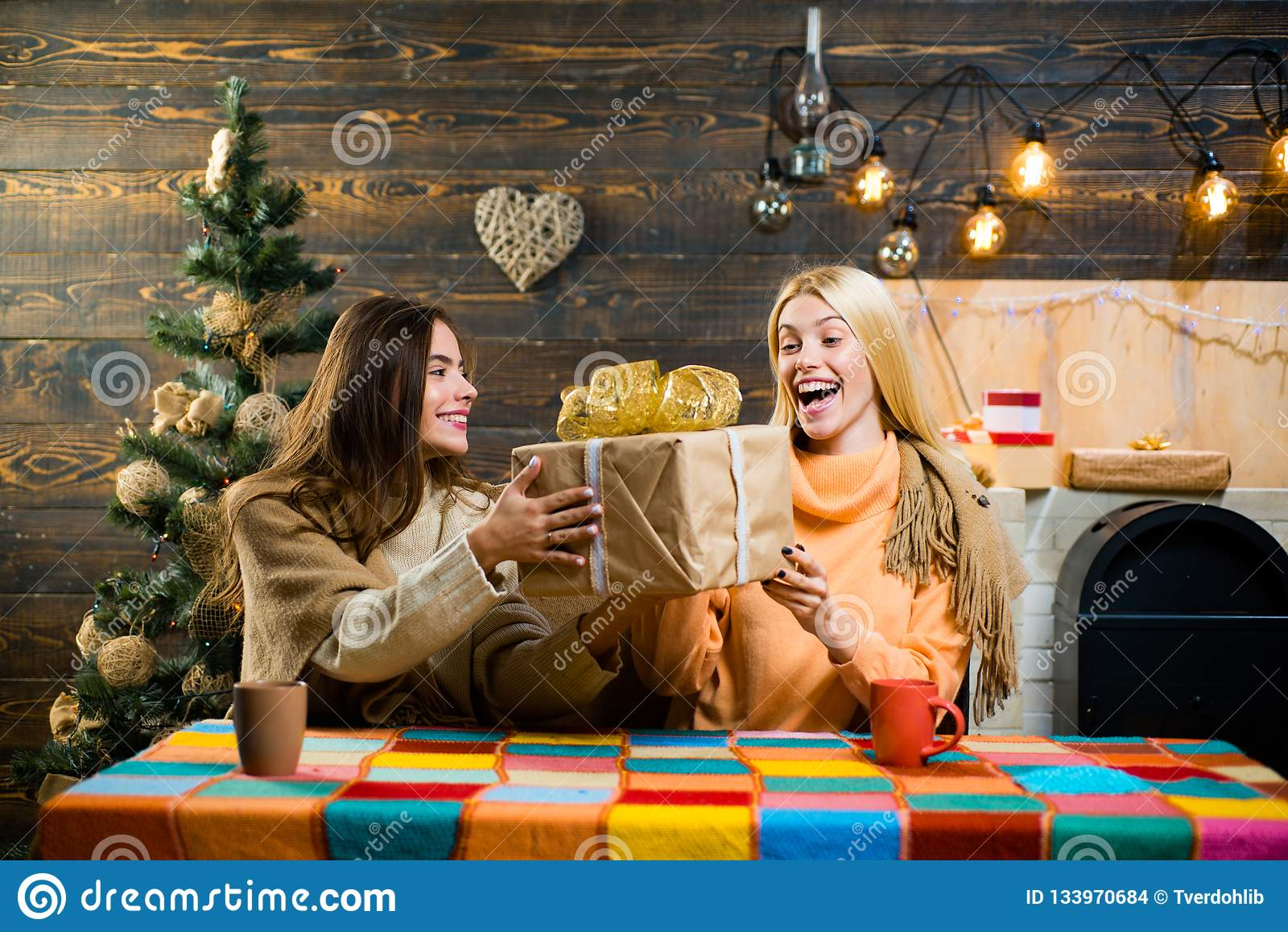 Christmas Present Ideas For Best Friends Girl.Wish You Merry Christmas Present Gift On Winter Holidays