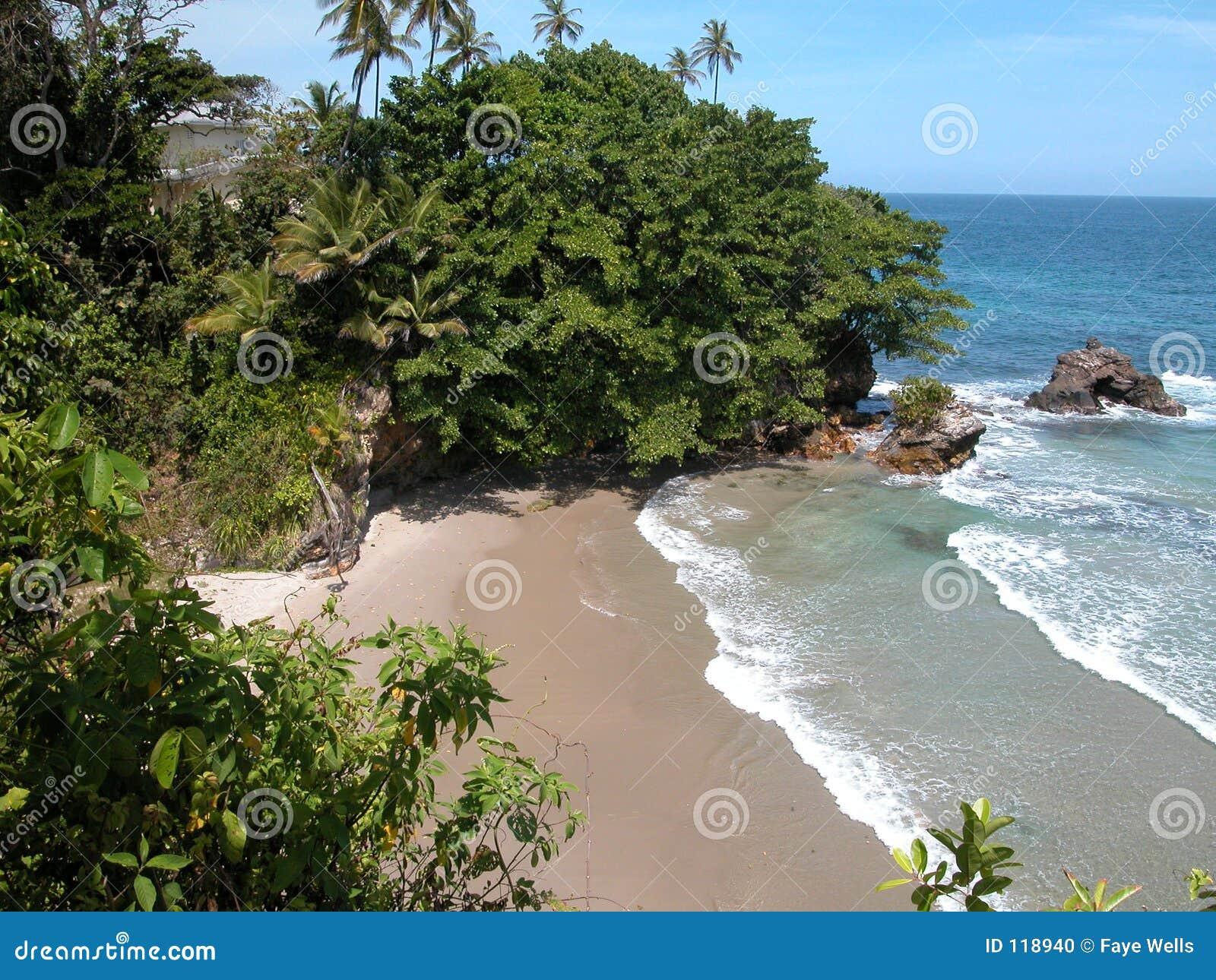 Download Wispering Waters stock photo. Image of aquamarine, reefs - 118940