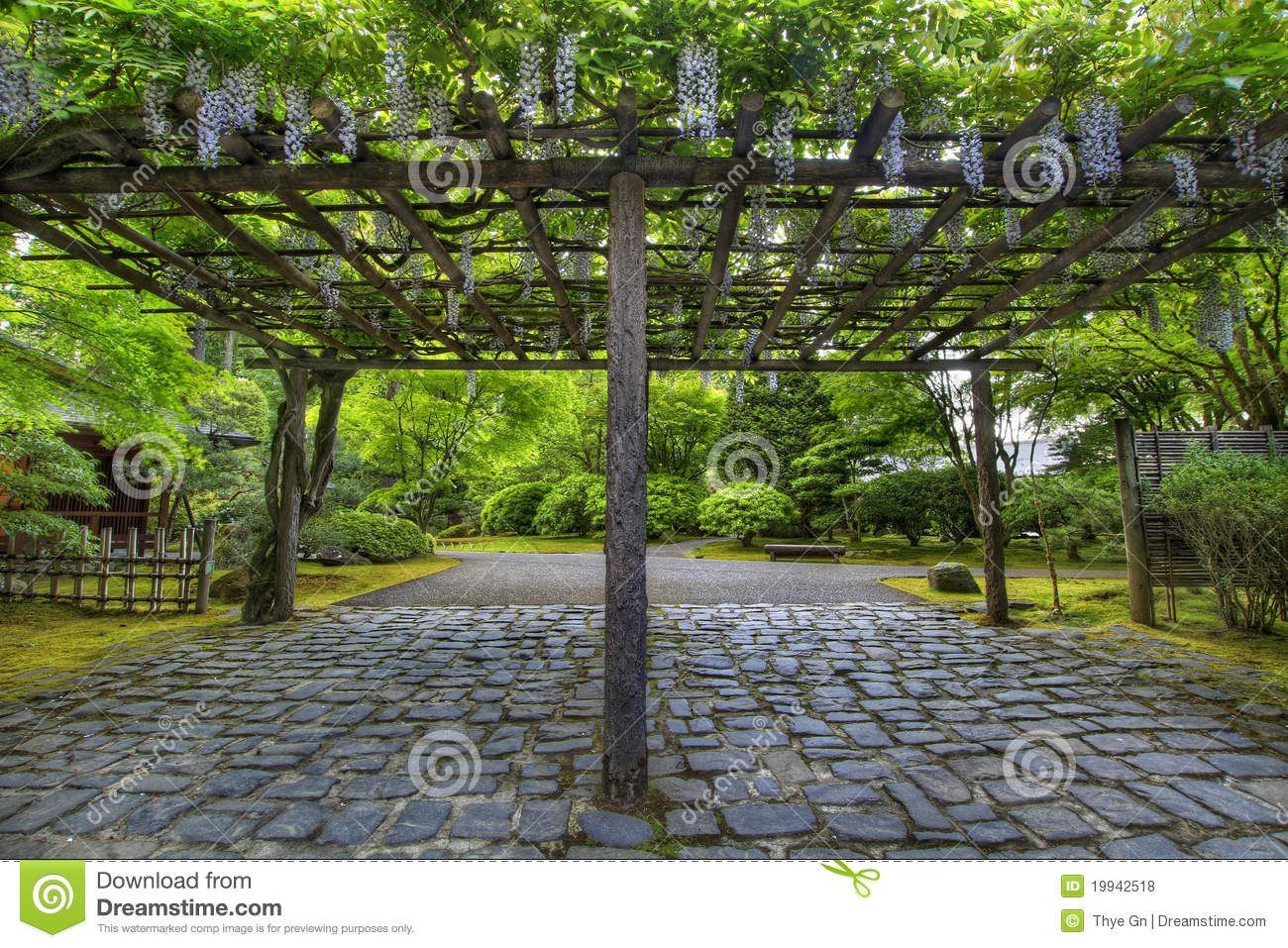 Wisteria in bloom at portland japanese garden path royalty - Tonnelle de jardin en fer forge ...