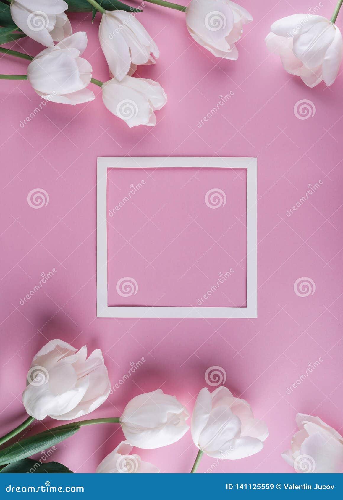 Wit tulpenbloemen en blad van document over lichtrose achtergrond Kaart voor Moedersdag, 8 Maart, Gelukkige Pasen Het wachten op