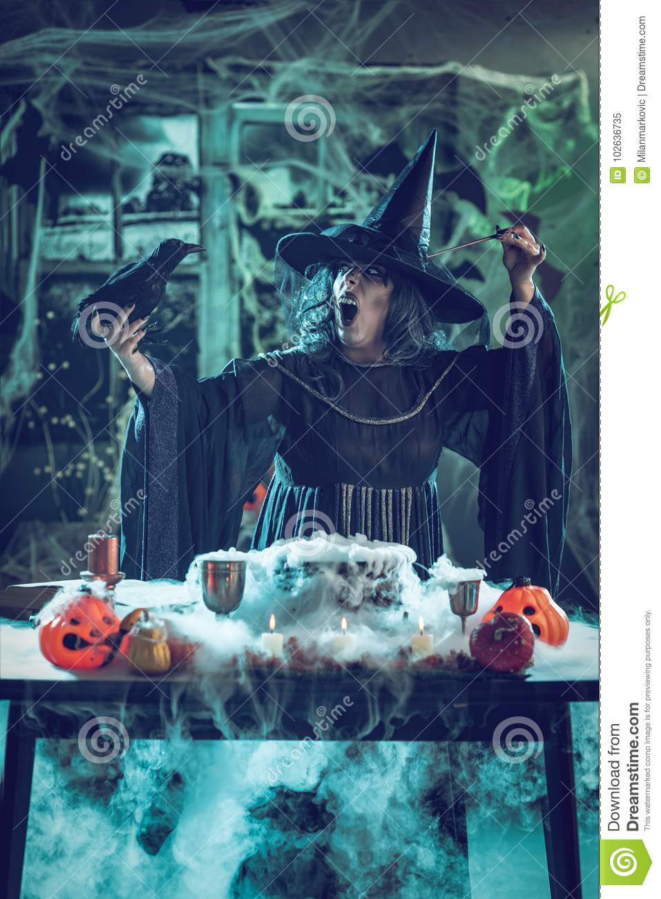 Witch Tells Magic Words To Blackbird Stock Image - Image of