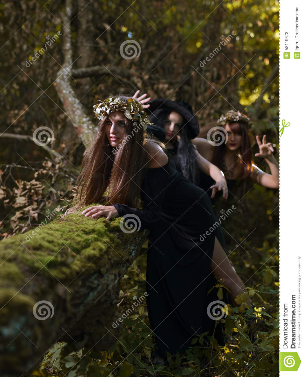 Witches In Dark Forest Stock Photo