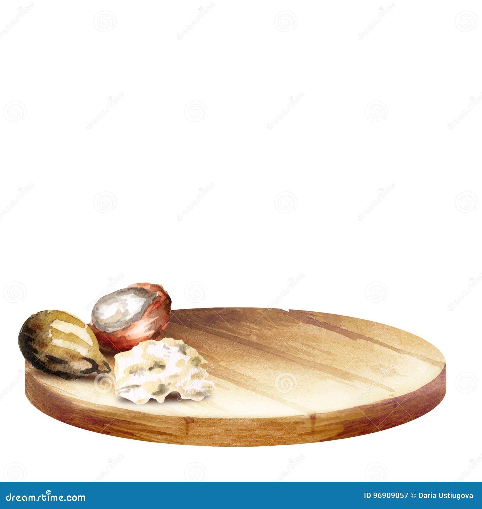WithBackground предпосылки с гайками диска и дерева ши с маслом Конусы handplatter и сосны акварели с гайками