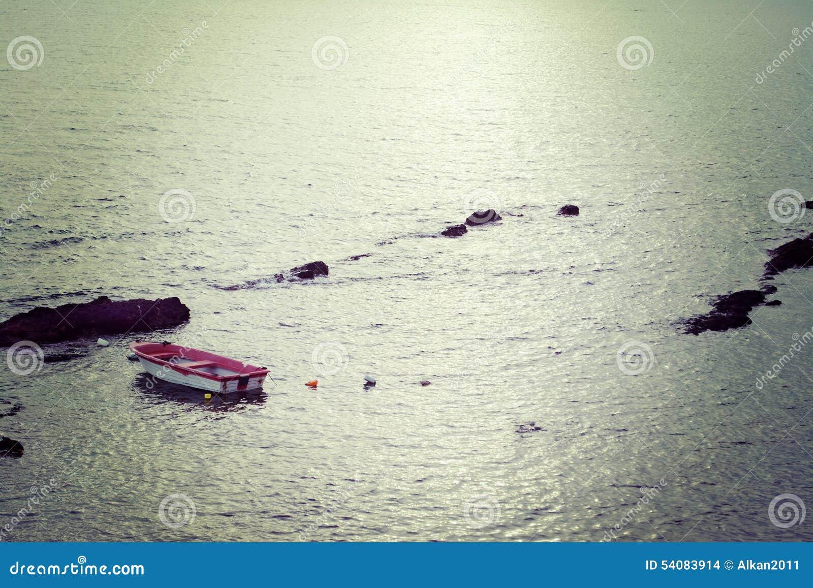 Witte boot in uitstekende toon
