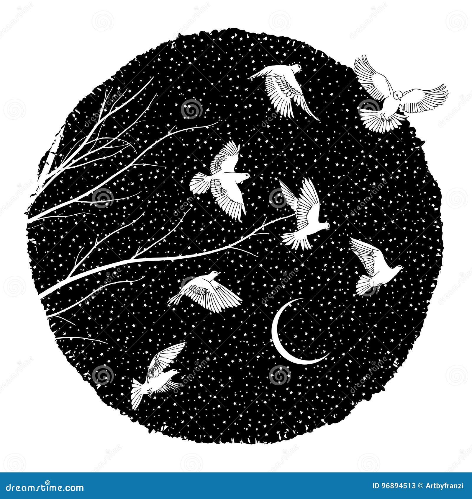Witte Duiven bij nacht