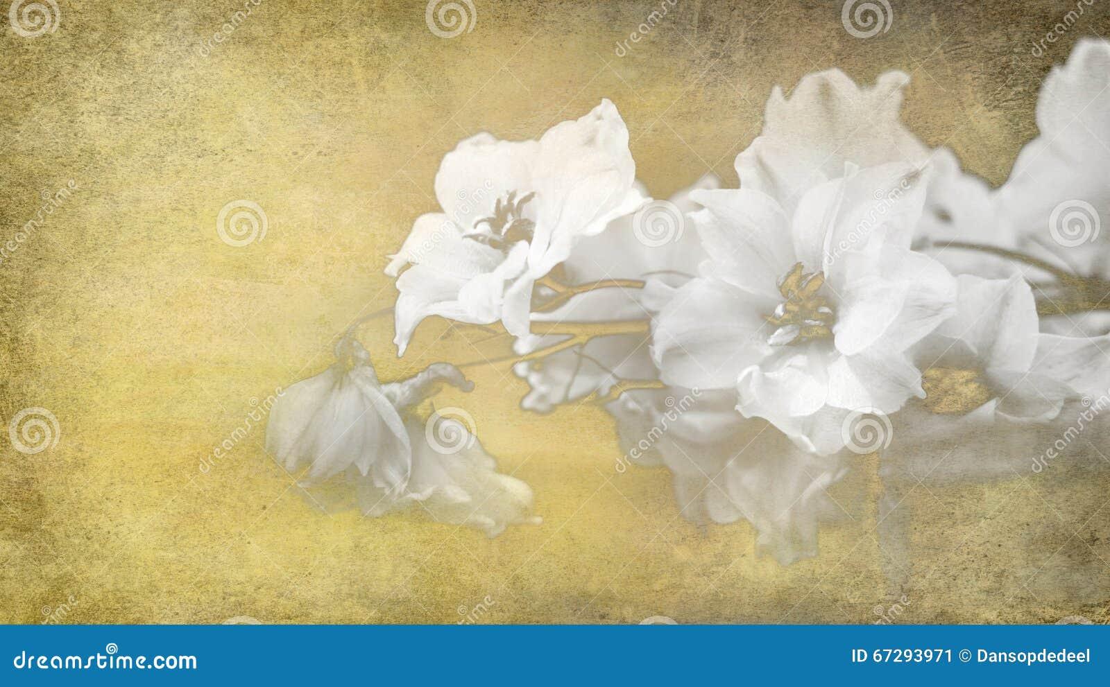 Afbeeldingen Papieren Bloemen