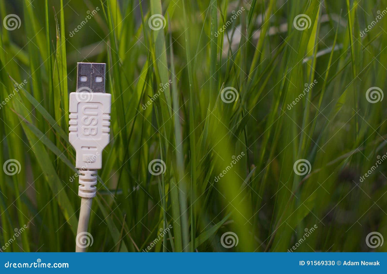 Witte USB-kabel op gras - groene technologie
