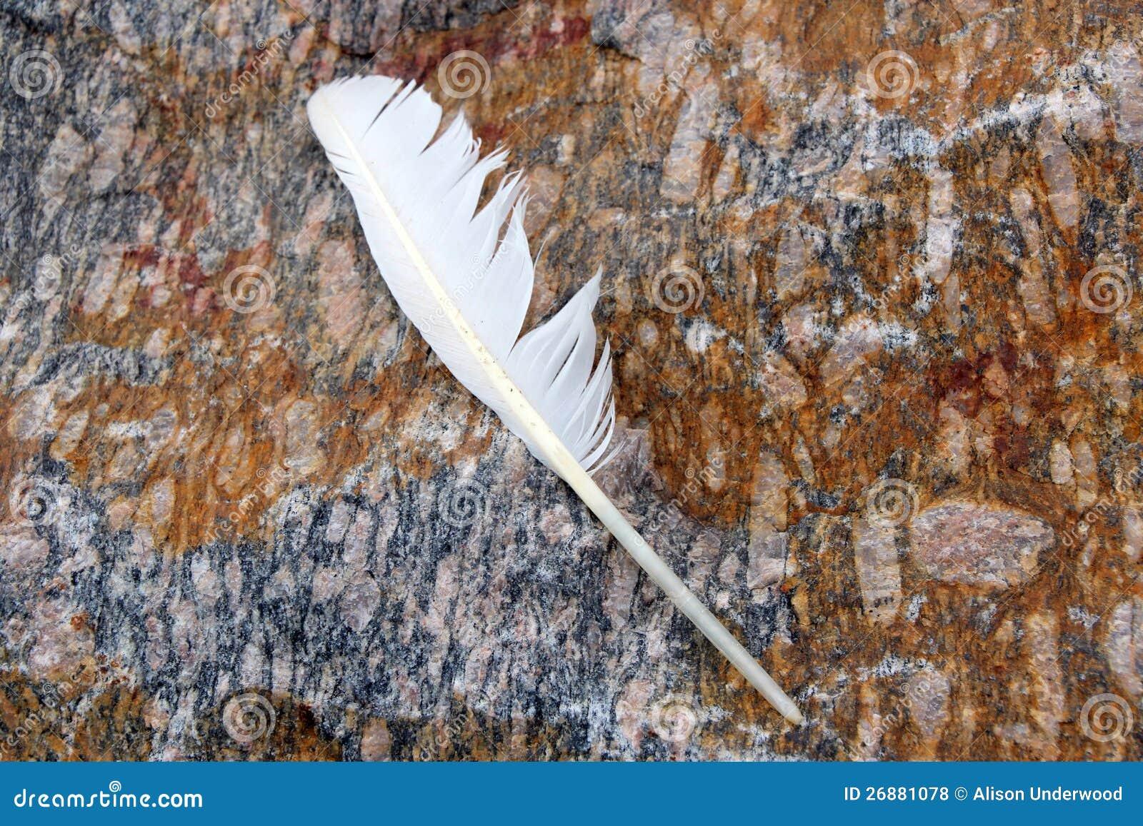 Witte Veer op de Rots van het Graniet