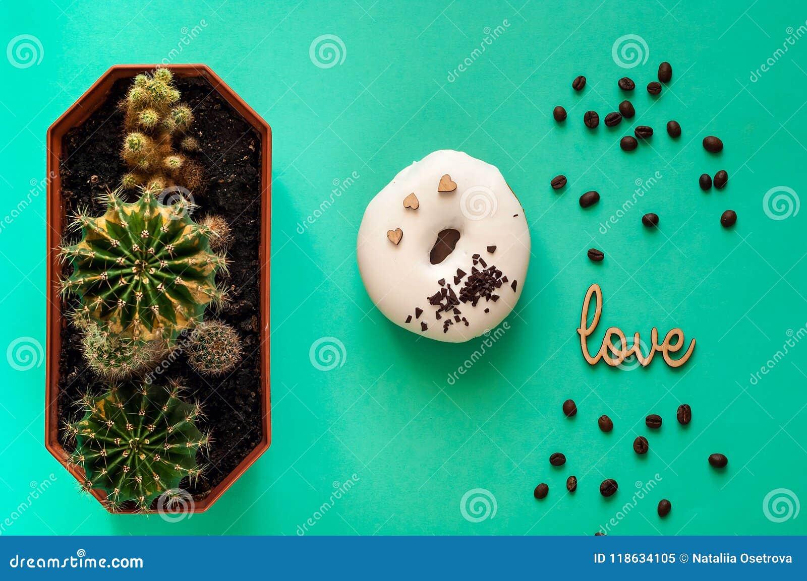 Witte verglaasde doughnut met zwarte chocoladesnoepjes met kleine cactussen Voedsel creatief concept De Stemming van het TGreenne