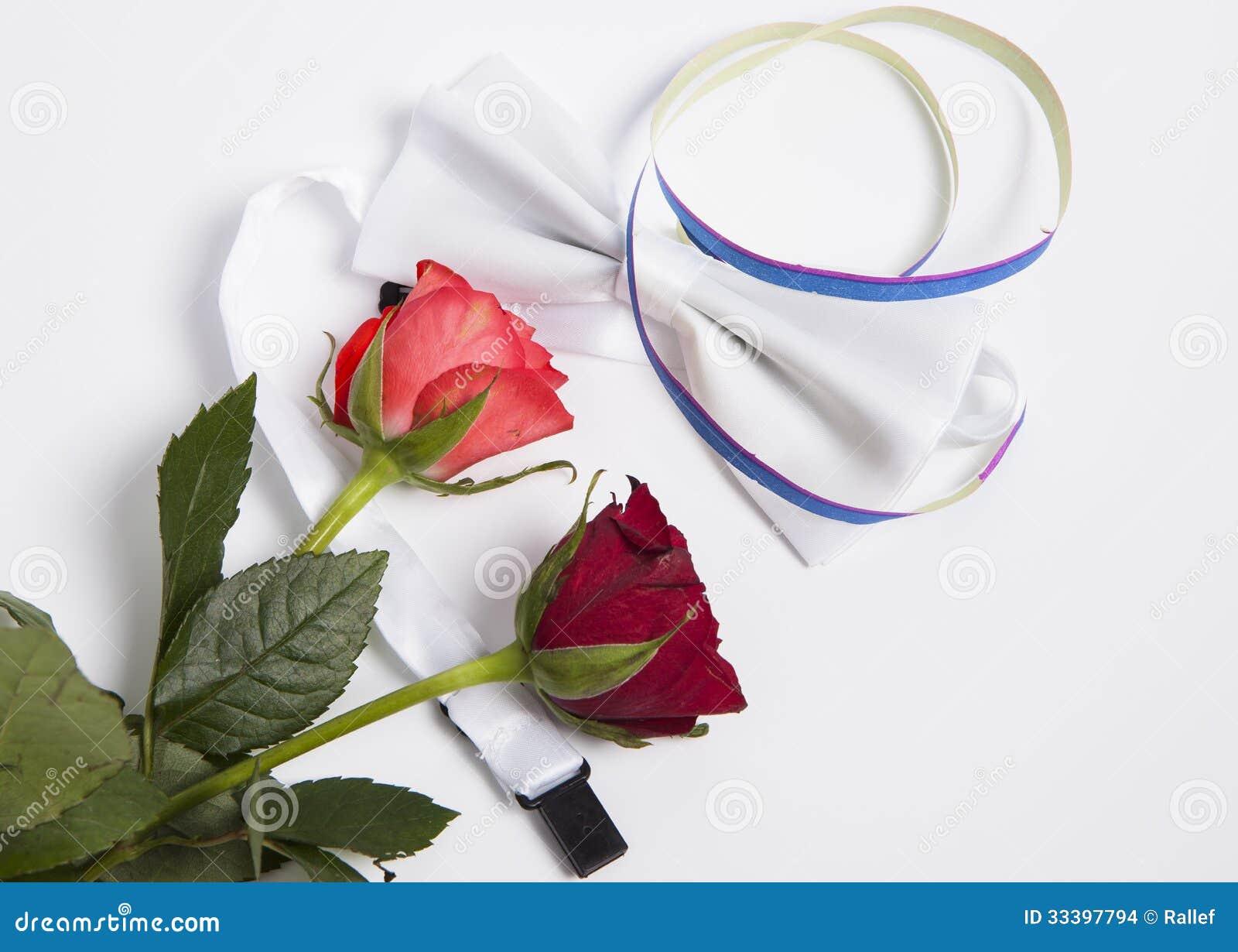 Witte vlinderdas en rozen