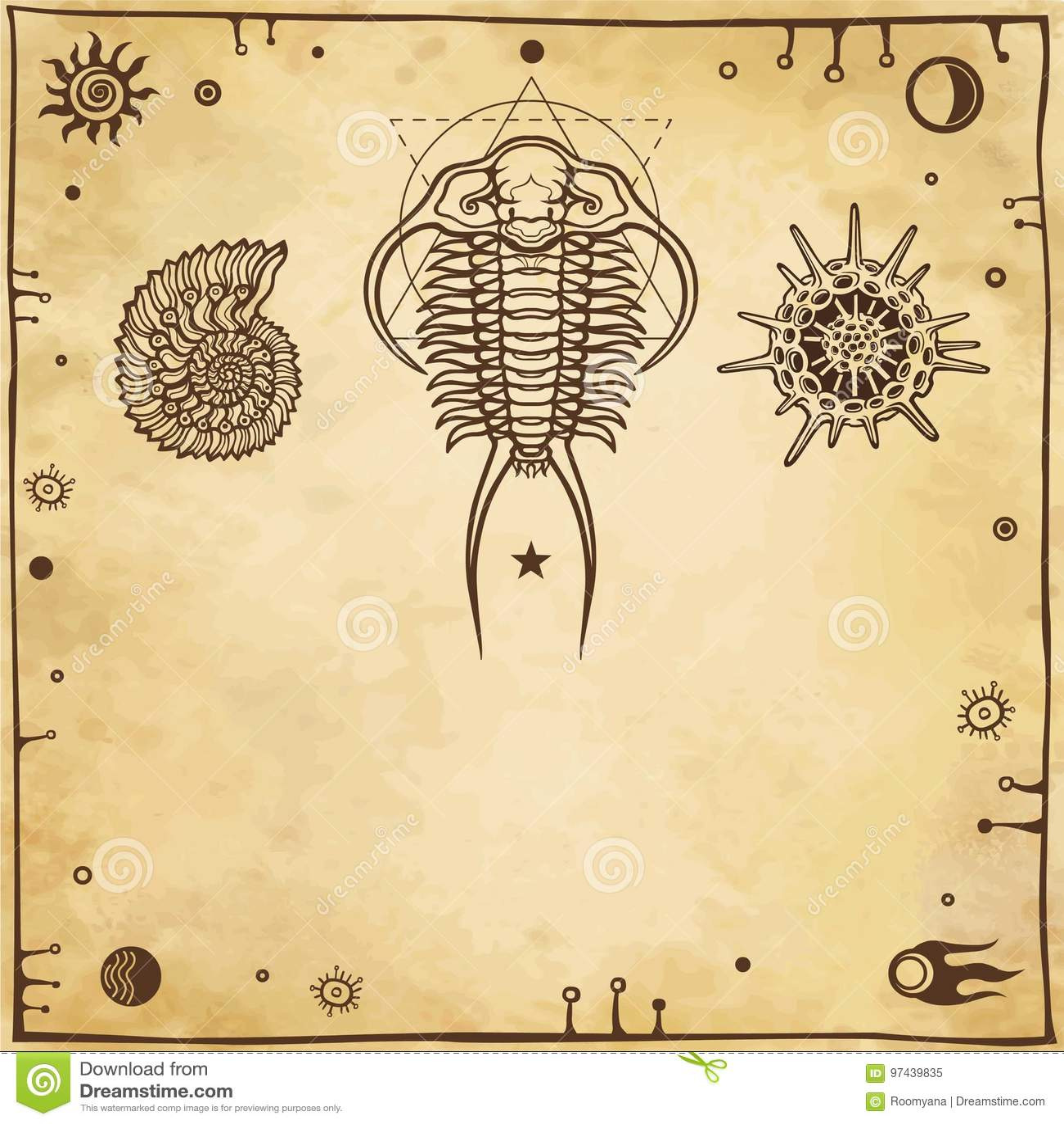 Wizerunek antyczni morscy organizmy: trilobit, mollusk, radiolaria