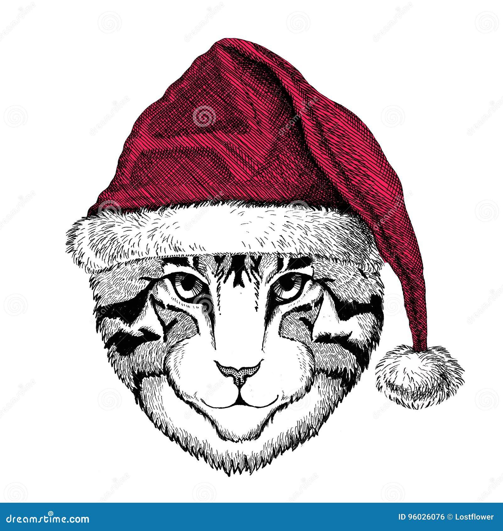 Wizerunek domowego kota Bożenarodzeniowy ilustracyjny dzikie zwierzę jest ubranym bożego narodzenia Santa Claus zimy kapeluszu ka
