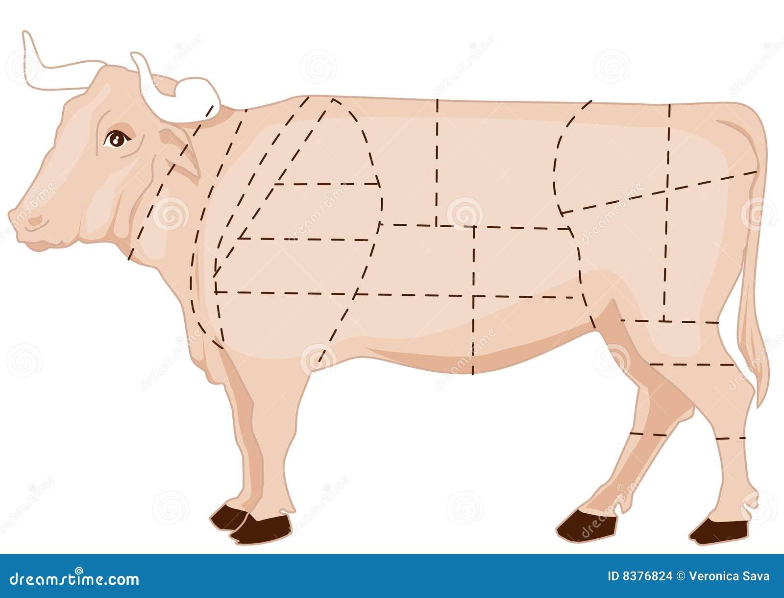 Wołowiny mapa