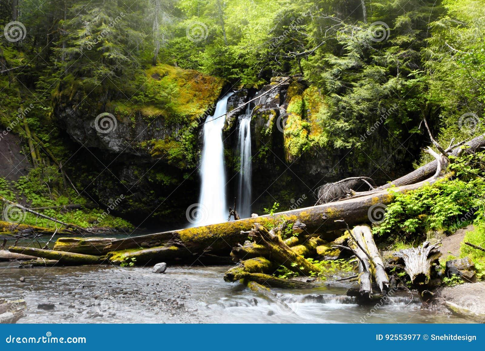 Woda spada w góra Dżdżystym parku narodowym